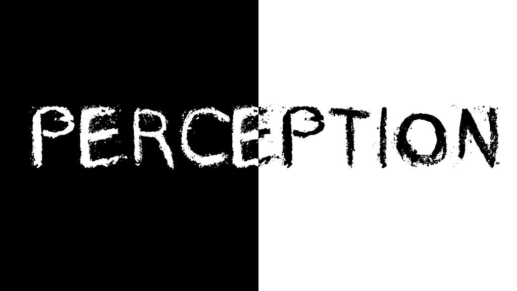 PERCEPTION-2