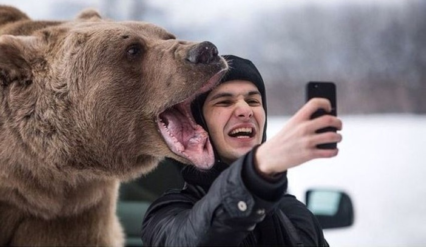 selfie-with-bear-very-danger